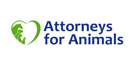 Erio Marketing AFA Logo